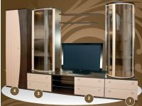 Мебель для гостиной Макеенков