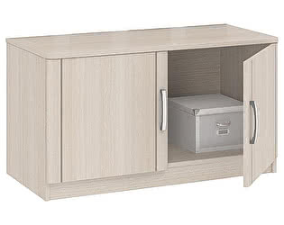 Купить тумбу Боровичи-мебель 2-х дверная Лотос АРТ-1.03