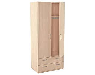 Шкаф для одежды 2-х дверный серии Лотос АРТ-5.28