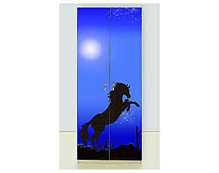 Шкаф 2х дверный Мустанг синий