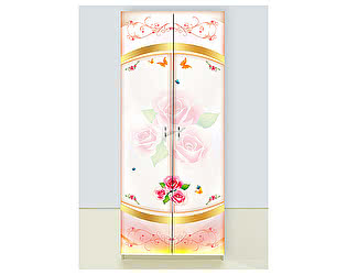 Шкаф 2х дверный Золушка
