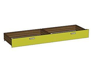 Ящик к кровати Любимый дом Модекс, ЛД 505.021