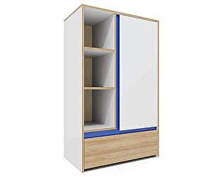 Купить шкаф Заречье Радуга Р6 многоцелевой (вставка синий)