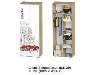 Купить шкаф BTS ШК-09 STREET BOY