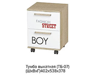 Тумба выкатная BTS Сенди ТБ-07 STREET BOY