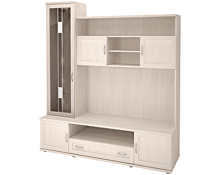 Шкаф-стеллаж Ижмебель Ника -Люкс 50 комбинированный
