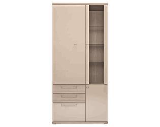 Шкаф комбинированный Ижмебель Вива 01 2-х дверный