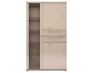 Шкаф комбинированный Ижмебель Вива 02 2-х дверный