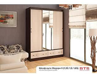Купить шкаф BTS Модерн-2 1,65 м