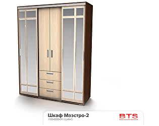 Купить шкаф BTS Маэстро-2