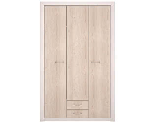 Шкаф для одежды 3-х дверный, без зеркала Арника Мальта 6