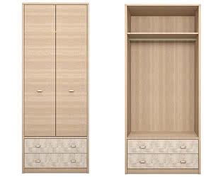 Шкаф Ижмебель Ультра 1 для одежды