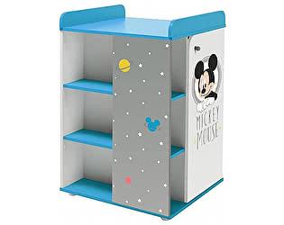 Купить тумбу Polini Disney baby с дверью,  комбинированная