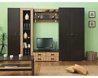 Комплект мебели для гостиной Элегант 2, комплектация 1