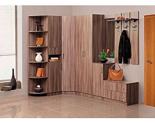 Комплект мебели для прихожей Эгида 1, комплектация 2