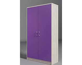 Шкаф с 2мя дверьми Фанки Сити, ФС-06