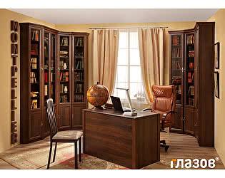 Библиотека Глазов Montpellier 2 (орех шоколадный)