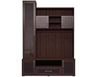 Шкаф-стеллаж Ижмебель Аргентина комбинированный, мод.14