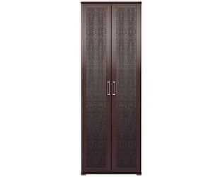 Шкаф Ижмебель Аргентина 2х дверный для одежды без зеркал, мод.9