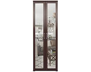 Шкаф Ижмебель Аргентина 2х дверный для одежды с зеркалом, мод.9