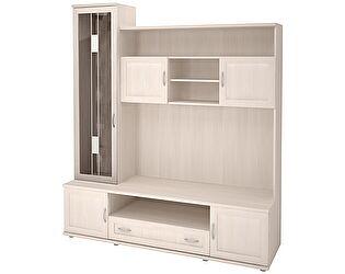 Шкаф-стеллаж комбинированный Ника-Люкс АРТ 24Р