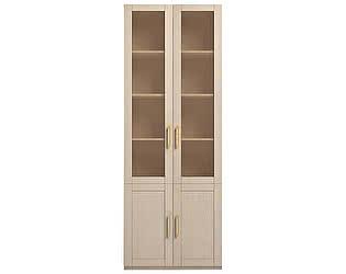 Шкаф Ижмебель Скандинавия Люкс 2х дверный для книг, мод.21