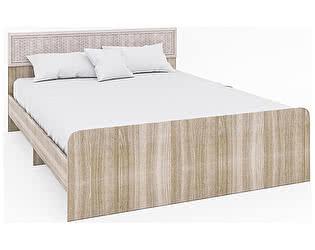 Кровать Кентавр 2000 Раут-1 (160) с поддоном №25