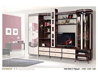 Шкаф комбинированный с витриной КМК Орфей-11, 0364.2-правый
