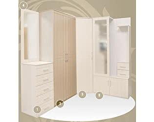 2-х дверный шкаф для одежды, прихожая № 19