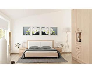 Модульная спальня Santan Элит (Композиция 1)