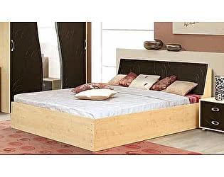Кровать Аджио Карина-6 160
