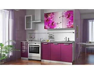 Кухонный гарнитур Стиль Роза (композиция 5)