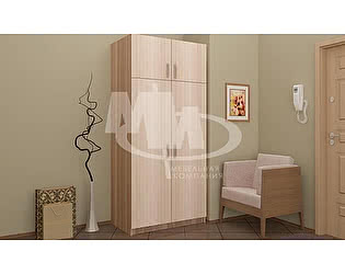 Шкаф Миф распашной 2 двери