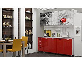 Кухня с фотопечатью Регион 58 Одуванчик 2.0 м МДФ