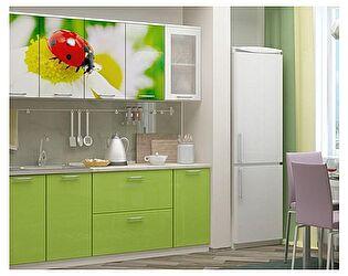 Кухня с фотопечатью Миф Божья коровка 2,0 м МДФ