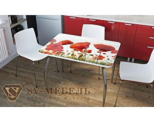 Стол обеденный SV-мебель Маки