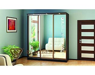Купить шкаф SV-мебель Геометрия