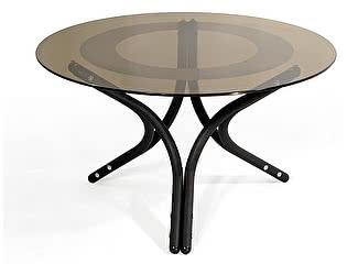 Стол журнальный Мебелик Дуэт 6 чёрный/ тонированное