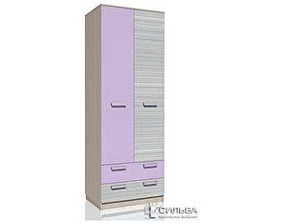 Шкаф для одежды с ящиками Сильва Рико Модерн НМ 013.02-03
