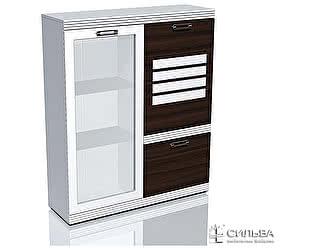 Шкаф комбинированный Сильва Деко НМ 014.65