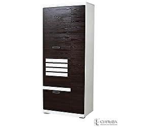Шкаф для одежды Сильва Деко НМ 014.66