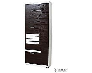 Шкаф для одежды Сильва Деко НМ 014.66-01
