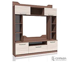 Шкаф комбинированный Сильва Рива 2 НМ 013.07-01