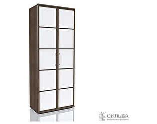 Шкаф для одежды Сильва Степ НМ 014.70