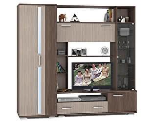 Шкаф для одежды Mobi Дарси 1 +Стенка