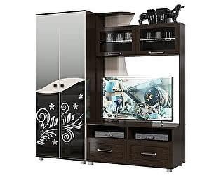 Гостиная Мэри-Мебель Каролина Комплектация 04 Шкаф + Тумба под ТВ