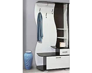 Шкаф комбинированный Олимп-Мебель Визит-М10