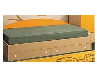Кровать одинарная с двумя ящиками Олимп-Мебель