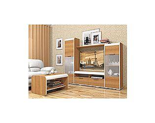 Мебель для гостиной Сильва