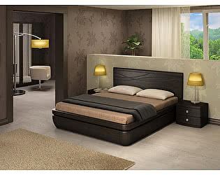 Кровать Торис Тау 1 C8 (Фелис)